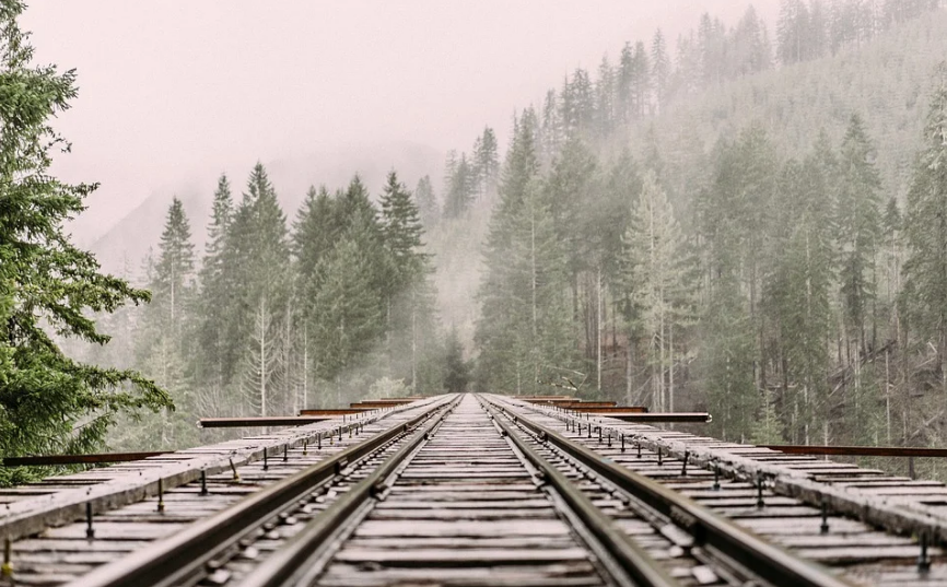 a railroad through the forest